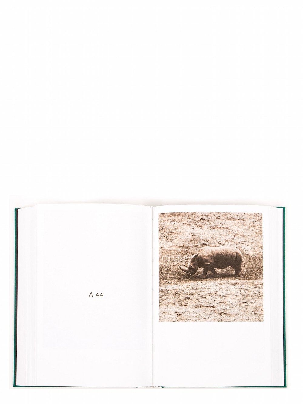 "RICK OWENS - ""NUDE ANIMAL CIGAR"" BY PAUL KOOIKER"